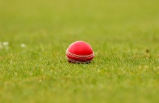 Cheat sheet: a beginner's guide to the world of cricket