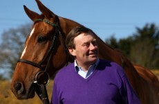 Punchestowns to give Cheltenham a miss