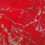 Cleared Amazon forest in the central Brazil state of Mato Grosso shows up as beige rectangles over the span of fourteen years. Mechanized agriculture for crops such as soy took over 1.3 million acres in Mato Grosso just between 2001 and 2004.