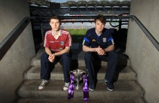 Different wavelength: Breffni County tuned in as county on brink of All-Ireland victory