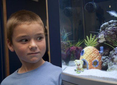 Sean Graham, 7, poses with a €500 aquarium he won from Sharkey's Cuts for Kids hairdressers. Today he donated the aquarium to Temple Street Children's Hospital for the enjoyment of its patients.