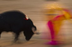 Catalonia marks final day of bullfighting ahead of ban
