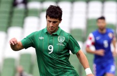 Injury update: Shane Long will not be travelling to Russia