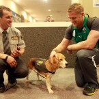 Jamie Heaslip meets a new friend at customs. 