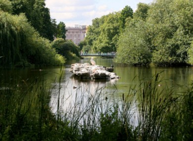 St James's Park, with Buckingham Palace in the background