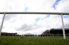 And they're off… Punchestown gets the go-ahead