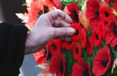 Column: Is it time to start wearing the poppy?