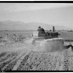 Benji Iguchi driving a tractor through a dusty field on the arid grounds of the Manzanar camp. (Library of Congress, Prints & Photographs Division)