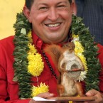 Venezuelan president Hugo Chavez loves his squirrel - stuffed (AP Photo/Dado Galdieri)