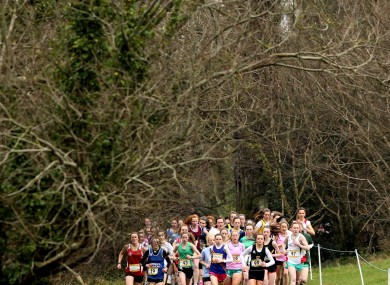A shot from yesterday's Leinster Schools Cross Country Championships.