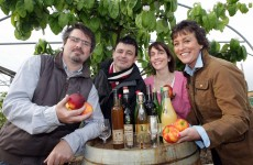 "Food sector ""pivotal in Irish tourism"""