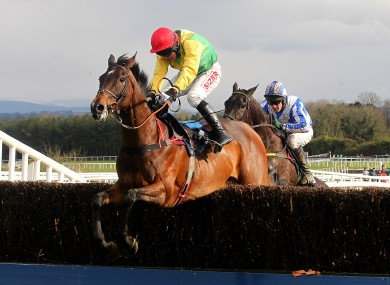 Sizing Europe lands in front of Realt Dubh to win the Champion Chase.