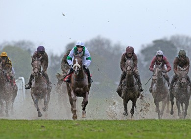 The runners and riders in the final race of the day, The At the Races Flat Race yesterday.