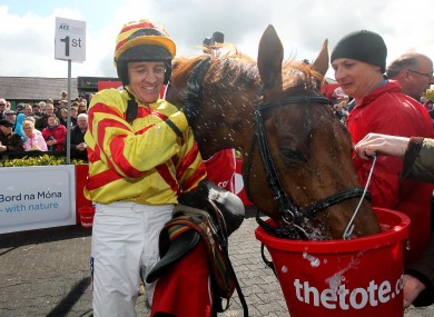 Winning jockey Barry Geraghty gives China Rock a well deserved drink.