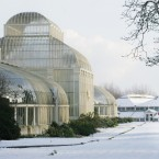 #2 National Botanic Gardens - 501,000 visitors (Photo: Leon Farrell / Photocall Ireland)