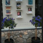 The Company of Books in Ranelagh