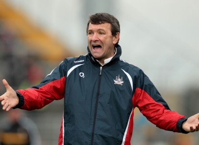 Back In Action: Jimmy Barry-Murphy is filling the Cork senior hurling hotseat once more.