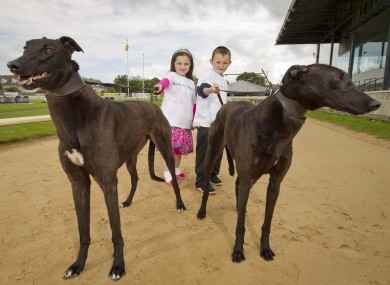Mia McLoughlin from Rathmines and 7 year old Lee Hallion from Rathmines with Aoife's Champ and Amy's Hope.