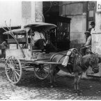 A fruit vendor with his cart, circa 1904. (Library of Congress, Prints & Photographs Division)