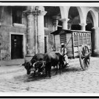 1903: A meat wagon in Havana. (Library of Congress, Prints & Photographs Division)