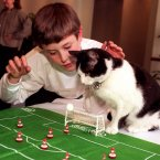 Jimmy the cat, a keen Subbuteo player, with his owner, 10-year-old Andrew Tierney of Cowling, North Yorkshire, in London this afternoon (Wednesday) after he was proclaimed Cat of the Year. The four-year-old black and white feline was rescued after he was thrown on a bonfire and has gone on to become a keen football fan.