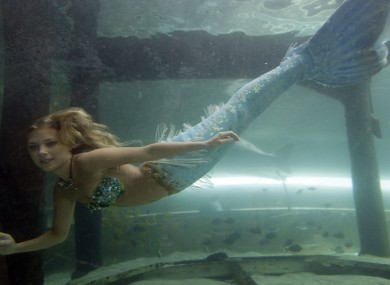 'Hanna the mermaid' at the Mermaid Lagoon at Sydney Aquarium. We think there might be something fishy about that 'tail'...