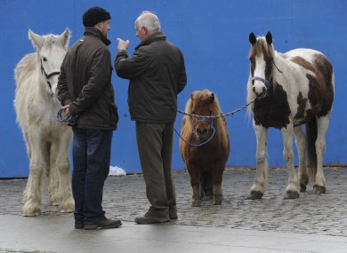 The monthly horse fair would be limited to twice a year under Dublin City Council's proposals.