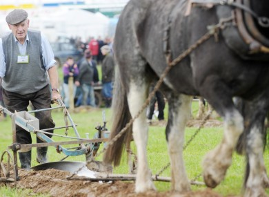 81-year-old Edward Dowse at the National Ploughing Championships in Wexford during the week