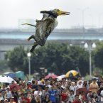 A participant dressed in a bird costume takes flight during the 2012 Taiwan Birdman competition in New Taipei City, Taiwan. (AP Photo/Wally Santana)