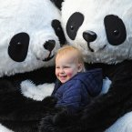 Honor Llewellin 2, getting a cuddle from the giant pandas on Princes Street, Edinburgh. (Mark Runnacles/PA)