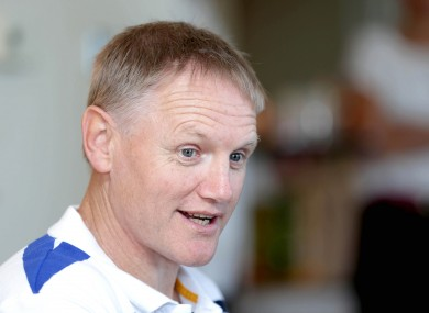 Leinster coach Joe Schmidt has a raft of injury concerns going into a Heineken Cup weekend.