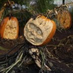 Carved pumpkins are displayed at the New York Botanical Garden in New York. (AP Photo/Seth Wenig)