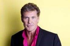 David Hasselhoff: 'I'd love to resurrect Murder She Wrote'