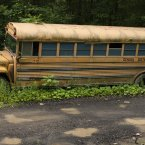 An abandoned school bus. 