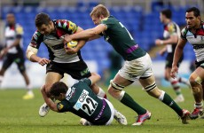 Green pastures: 80,000 to watch Harlequins and London Irish square off