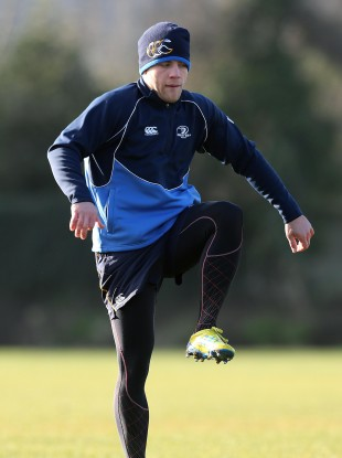 Ian Madigan, may not have the number 10 shirt all to himself next year.