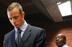 Bungling detective in Pistorius case quits the force
