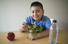 "HSE childhood obesity services ""sparse or non existent"" across country"