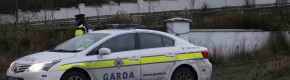 Two released in John Kerins murder investigation