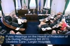 12 interesting moments from the Oireachtas abortion hearings