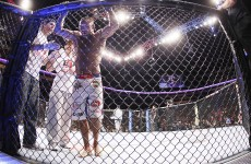 Evans outpoints Henderson at UFC 161